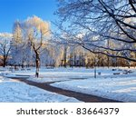 Winter City Park At Sunny Day