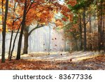 falling oak leaves on the... | Shutterstock . vector #83677336