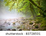 Mountain Stream  Fairy Trees O...