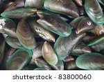 Mussels Background
