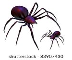 Illustration of black widow spiders isolated on white background. - stock photo