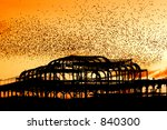 Starlings Over The Decayed Wes...
