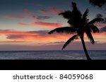 Silhouette of Palm Tree on Sunset Background - from North Shore of Hawaii - stock photo