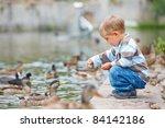 Cute Little Boy Feeding Ducks...