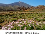 A View Of Volcano Mount Teide ...
