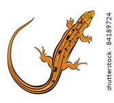 Raster version. Realistic gecko lizard. Illustration on white background for design - stock photo