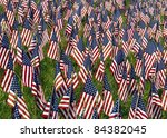 Many Small Us Flags In A Field...