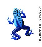 Colorful Blue Frog On White...