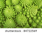 Roman Broccoli Isolated On White