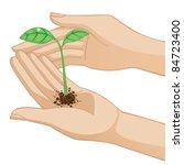 hands holding new little plant | Shutterstock .eps vector #84723400