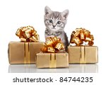 Funny Kitten And Golden Gifts ...