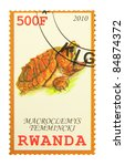 Small photo of RWANDA - CIRCA 2010: A stamp printed in Rwanda showing Alligator Snapping Turtle, circa 2010