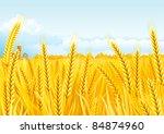 grain fields. fall landscape of ... | Shutterstock .eps vector #84874960