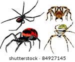 vector set of spiders