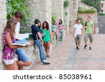 Stock photo multicultural group of college students 85038961