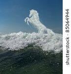 Sea Horse Horse Of The Sea...