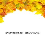 Autumn Maple Leafs Isolated On...