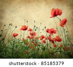 Poppy Flower Field. Texture An...