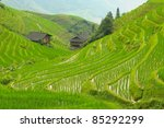 panorama of dragon back... | Shutterstock . vector #85292299