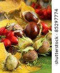 Autumn still-life with hazelnuts, chestnuts, acorns, rose-hip and rowan-berries - stock photo