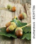 Autumn still-life with acorns on wooden background - stock photo