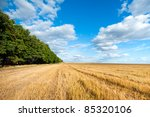fall farm field sloping - stock photo