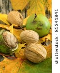 Autumn still-life with walnuts and leafs - stock photo