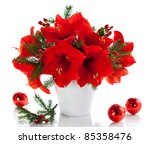 Red Amaryllis In Vase With...