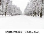 Lane At Winter Snowy Park At...