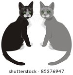 two cats sitting near - black and gray - stock photo