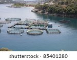 marine open water fish farm | Shutterstock . vector #85401280