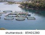 marine open water fish farm | Shutterstock . vector #85401280
