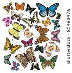 butterflies   complet vector | Shutterstock .eps vector #85463476