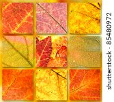 Autumn Banners Set Background....