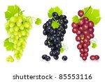 illustration of different... | Shutterstock .eps vector #85553116