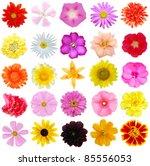 a set of seasonal bloomings | Shutterstock . vector #85556053