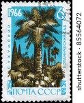 ussr   circa 1966  a stamp... | Shutterstock . vector #85564072