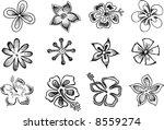 tropical sketch elements vector ...   Shutterstock .eps vector #8559274
