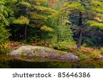Colorful trees in the fall - stock photo