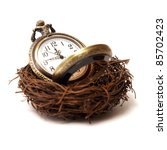 A concept of nurturing time as a valuable asset. - stock photo