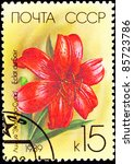 Small photo of USSR - CIRCA 1989: A stamp printed in the USSR shows a Eclat du Soir Lily, circa 1989.