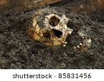 Real Human Skull On Wet Soil...