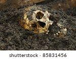 Real Human Skull On Wet Soil...