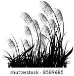 Black Silhouette Of A Grass On...