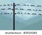 Birds In Autumn Countryside...