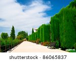 Alhambra garden in Granada, Spain