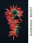 red pepper | Shutterstock . vector #862337