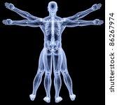 vitruvian man under x rays.... | Shutterstock . vector #86267974