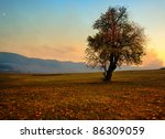 hdr autumn landscape with... | Shutterstock . vector #86309059