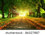 magic light at the and of... | Shutterstock . vector #86327887